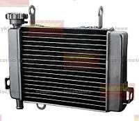 Радиатор охлаждения двигателя Honda CBR125. Новый