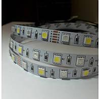 Лента ЛЕД SMD5050 12В RGB+W 60ЛЕД/1M (цена за 1 метр) LS5050RGBW MiLight