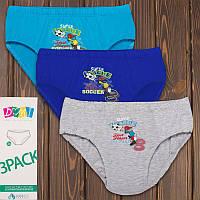 Набор детских трусиков плавок для мальчика Soccer Domi (Турция) 72250-1 | 3 шт.