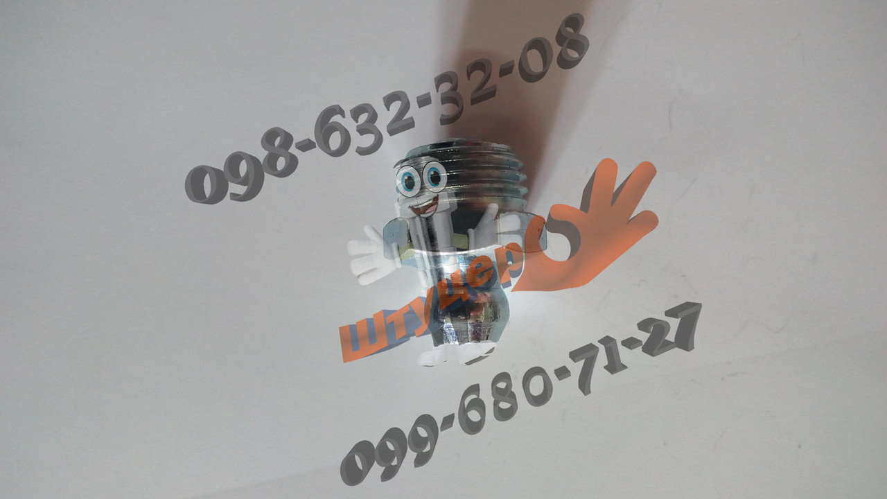 Прес-маслянка (тавотница) М10х1 пряма