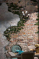 Как заказать декор интерьера стабилизированным мхом