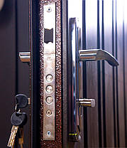 Наружные входные двери Редфорт Арка метал/МДФ на улицу, фото 3
