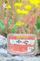 Корм для рыб Дафния (30 г) в пласт уп, Киев