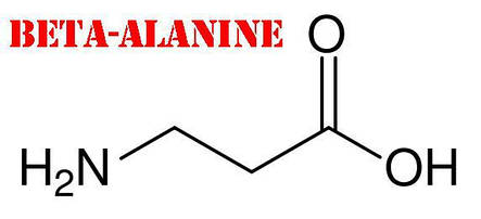 Аминокислота  Бета-аланин Profiprot 100г, фото 2