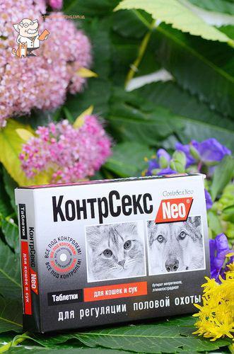 Контрсекс в украине