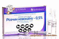 Раствор Новокаина 0,5% упаковка 10 амп по 10 мл Бровафарма