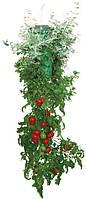 Плантатор для помидор Топси (Topsy Turvy)