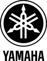 Двигатель для YAMAHA YZF R1 RN 19 RN 20 07-09