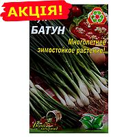 Лук Батун многолетний семена, большой пакет 5г