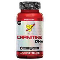 BSN Carnitine 60 tab