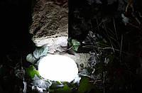 Светодиодный камень RGB, фото 1
