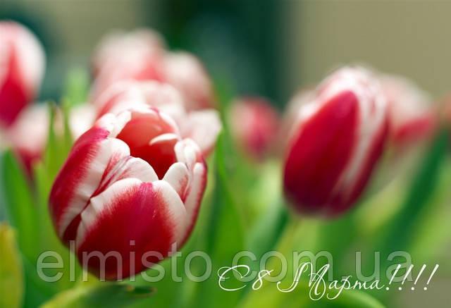 Поздравляем Вас с чудесным праздником весны