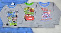 """Детская футболка с длинным рукавом """"Платон"""" для мальчиков"""