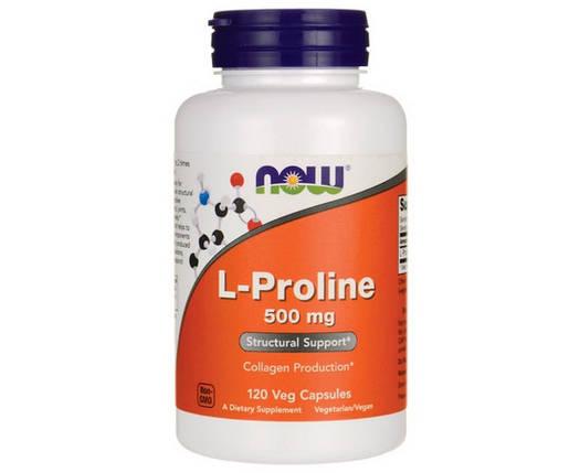 L-Proline 120 veg caps, фото 2
