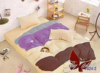Комплект постельного белья полуторный Color mix APT024-2