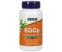 EGCg Green Tea Extract 400 mg 90 veg caps