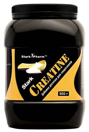 Creatine Stark Pharm 500 г, фото 2