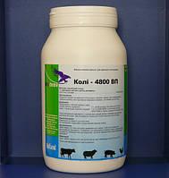 Коли-4800 ВП (1 кг)
