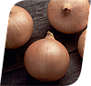 Семена лука Кэнди F1 250000 семян Seminis