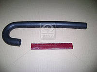 Шланг отопителя ГАЗ 3310 ВАЛДАЙ гнутый (покупн. ГАЗ) 33023-8120038