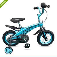 Велосипед двухколёсный 12 дюймов Projective LMG12121 магниевая рама синий ***
