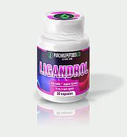 Лигандрол Ligandrol (30 capsules 10 mg) помогает наращивать мышечную массу