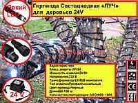 Гирлянда Светодиодная «ЛУЧ-3» и «ЛУЧ-5» украшение деревьев 24в