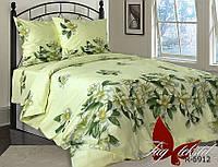 Комплект постельного белья R6912 евро (TAG(evro)-516)