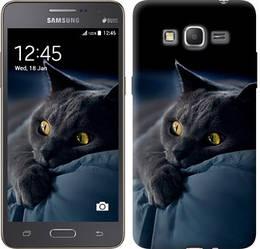 """Чехол на Samsung Galaxy Grand Prime VE G531H Дымчатый кот """"825c-212-328"""""""