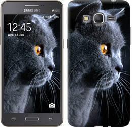 """Чехол на Samsung Galaxy J2 Prime Красивый кот """"3038c-466-328"""""""