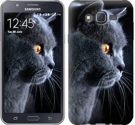 """Чехол на Samsung Galaxy J7 J700H Красивый кот """"3038c-101-328"""""""