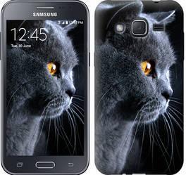 """Чехол на Samsung Galaxy J2 J200H Красивый кот """"3038c-190-328"""""""