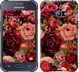 """Чехол на Samsung Galaxy J1 Ace J110H Цветущие розы """"2701c-215-328"""""""