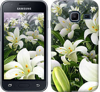 """Чехол на Samsung Galaxy J1 Mini J105H Белые лилии """"2686c-258-328"""""""