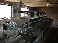 Клітка для кролів БМ - 2 Ф універсальна .