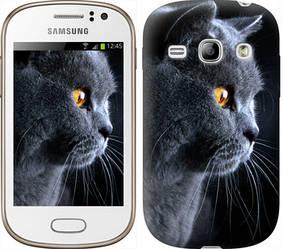 """Чехол на Samsung Galaxy Fame S6810 Красивый кот """"3038c-254-328"""""""