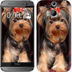 "Чехол на HTC One M8 dual sim Йоркширский терьер ""929c-55-328"""