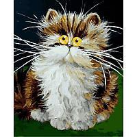 Картина по номерам Babylon Turbo Пушистый котенок VP876