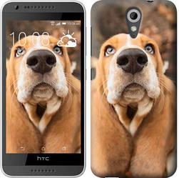 "Чехол на HTC Desire 620G Dogs nose autumn ""4052c-187-328"""