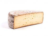 Закваска+фермент для сыра ТОММ, фото 1