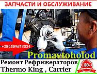 Ремонт Рефрижераторов Carrier Transicold, фото 1