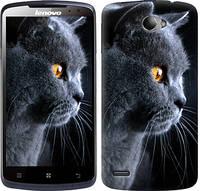 "Чехол на Lenovo S920 Красивый кот ""3038c-53-328"""