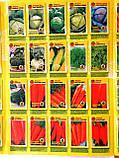 Насіння овочів, квітів в європакетах, фермерських упаковках, і на вагу ТМ КРОНОС-ТЕРНОПІЛЬ, фото 4