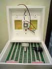 """Инкубатор бытовой """"Квочка"""" МИ-30 1Э-12 мех переворот яиц  (нагреватель — провод) 12 вольт, фото 3"""
