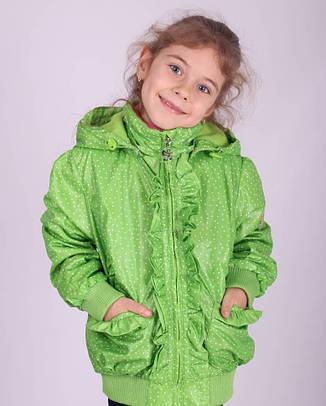 Детская демисезонная куртка для девочки Донило Donilo 2708 на флисе, фото 2