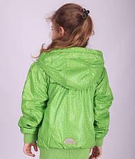 Детская демисезонная куртка для девочки Донило Donilo 2708 на флисе, фото 3