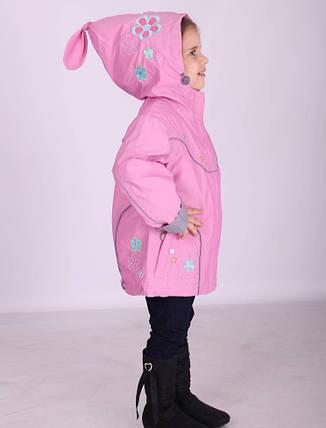 Детская демисезонная куртка для девочки DIWA Club, № 3162, фото 2