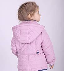 Детская демисезонная куртка для девочки Snow Image,№ 008, фото 3