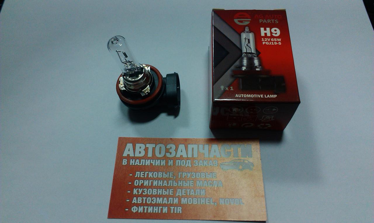 Лампа галогеновая 12V H9 65W AG