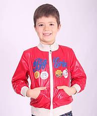 Ветровка для мальчика демисезонная, 98-130, фото 2